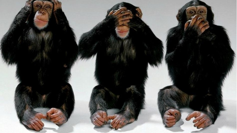 Hear no evil see no evil speak no evil monkey