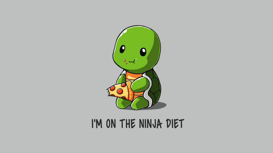 Ninja Diet Hd Wallpaper