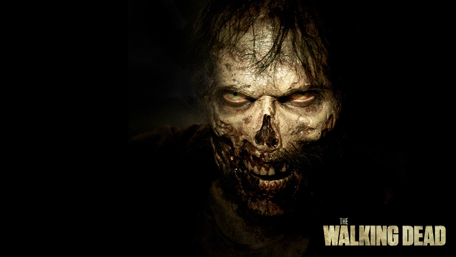 the walking dead hd wallpaper | 1920x1080 | gludy
